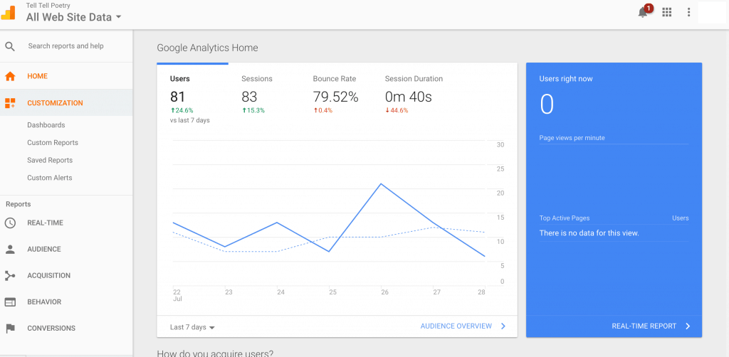 Website analytics are an important factor