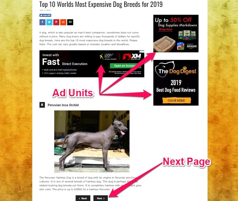 Monetisation of Dog Digest