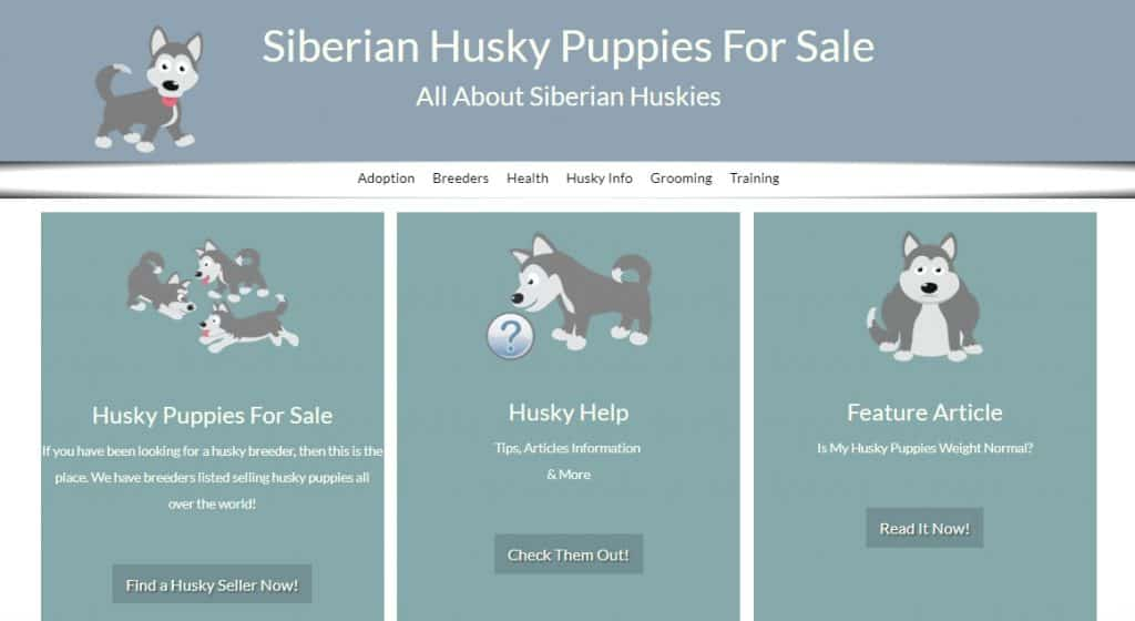 Husky Puppies Info